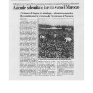 20/05/2006 Il Salernitano: Aziende salernitane in rotta verso il Marocco